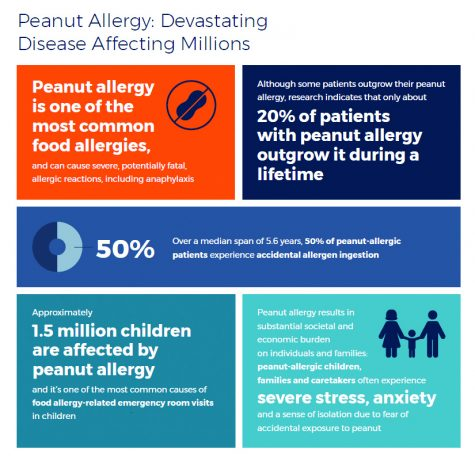 Those who suffer from peanut allergies  may finally find relief in the near future.