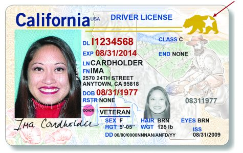 The Department of Motor Vehicles launched the REAL ID in October.