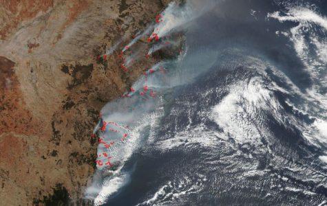 Conflagration ravages Australia's land, wildlife