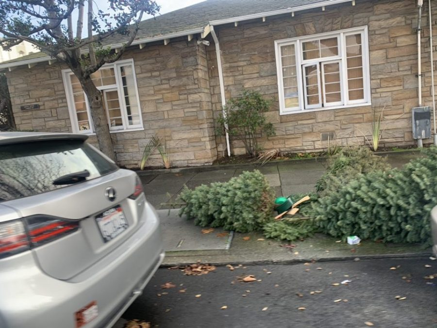 Trees were quickly, but not always properly, discarded shortly after Christmas.