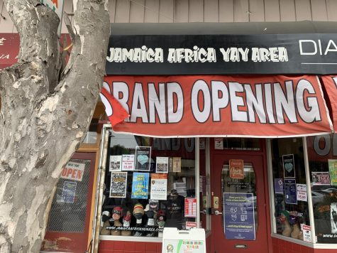 Ocean Avenue awash with new businesses