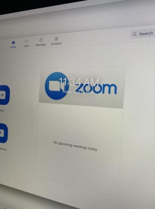Year of Zoom: Boom or Gloom?
