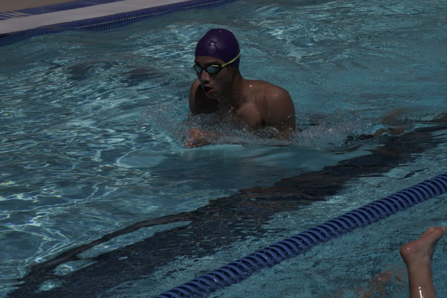 Varsity swimmer Julian Moll '21 rises from the surface at a swim meet.